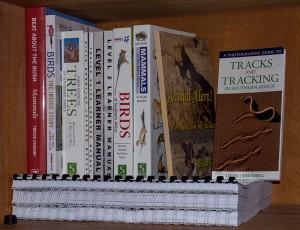 Boeken, boeken en... nog eens boeken