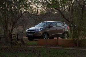 Hyundai!