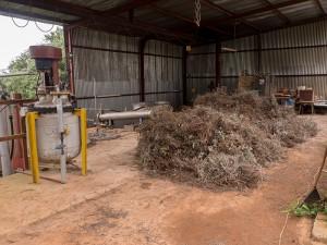 De productiehal, waar planten liggen te drogen voor er met stoom olie aan onttrokken wordt
