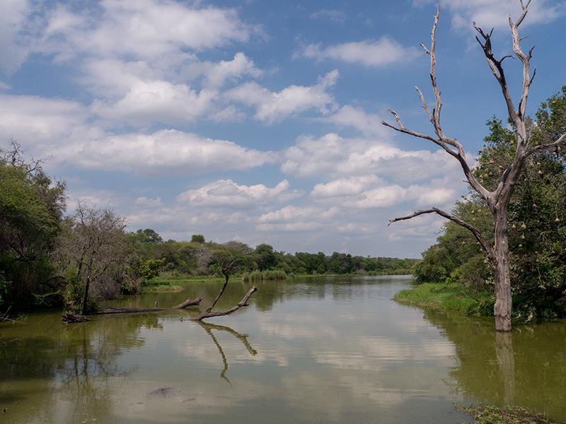 Uitzicht over Lake Panic vanuit de vogelkijkhut